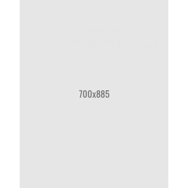 Dell E2316H 23 inch LED